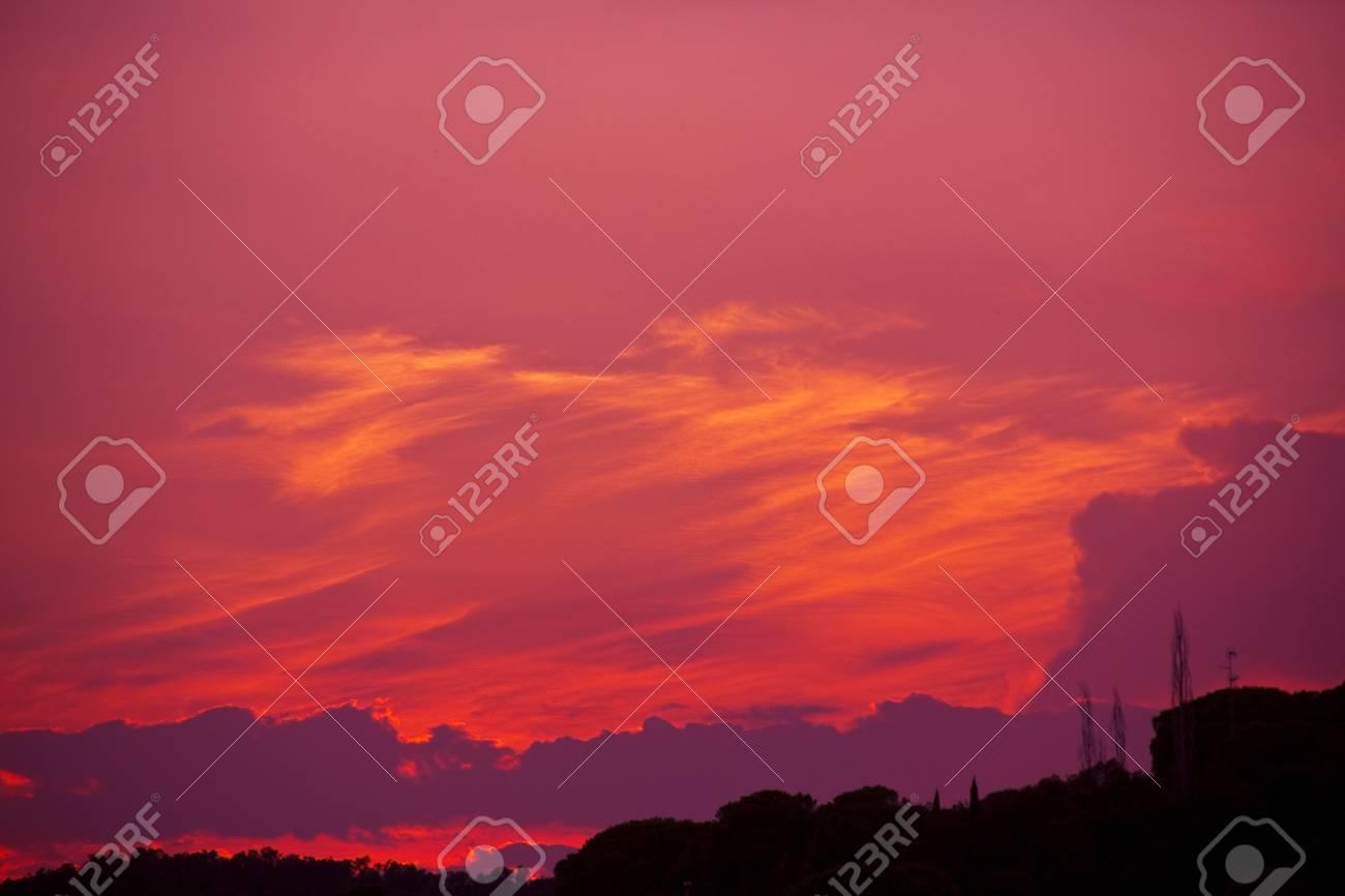 Cielo Rosso Di Notte.Un Cielo Rosso Brillante Di Notte Con Alberi Di Sotto Foto Royalty