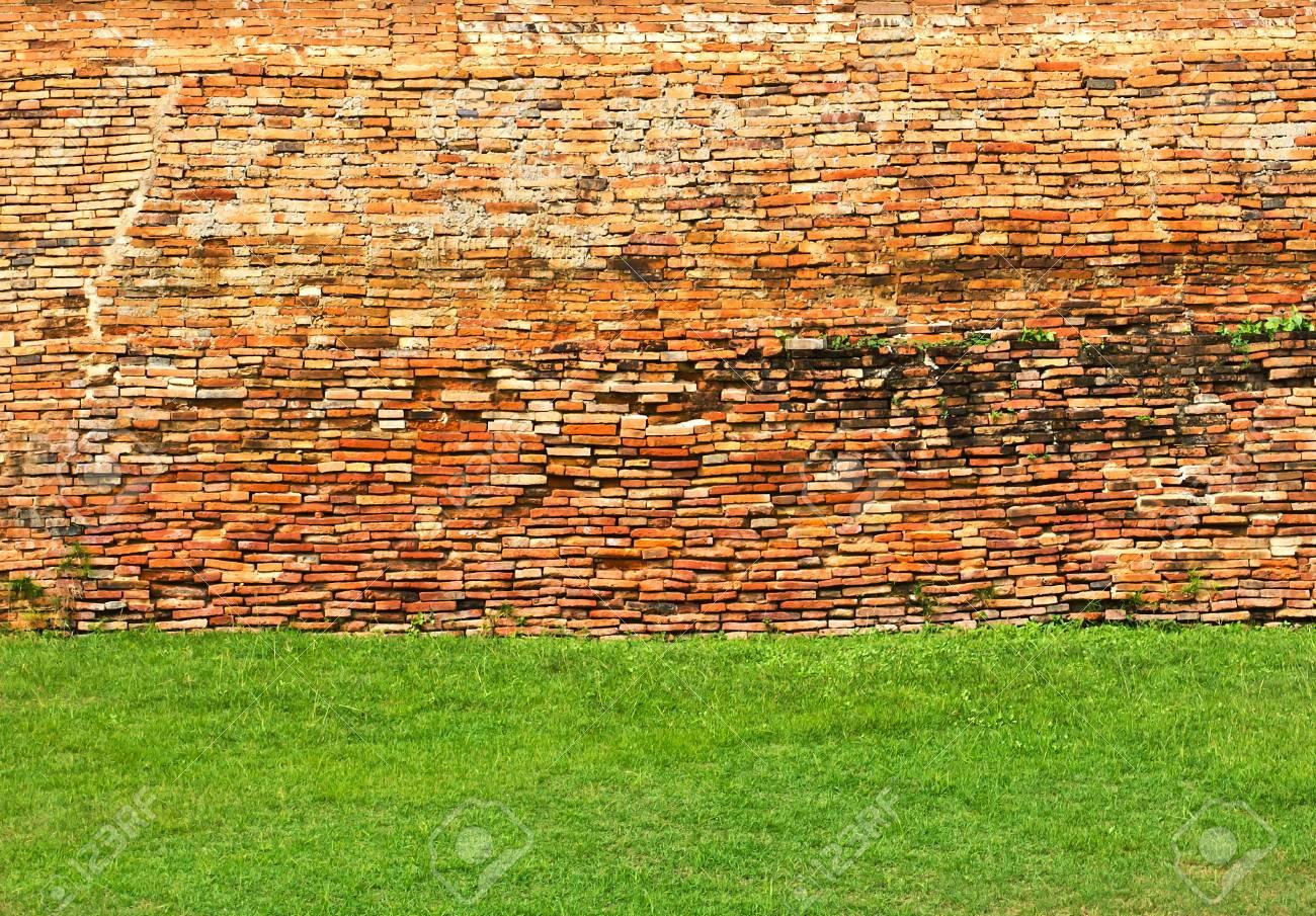 Close up texture of brick wall Stock Photo - 16952491