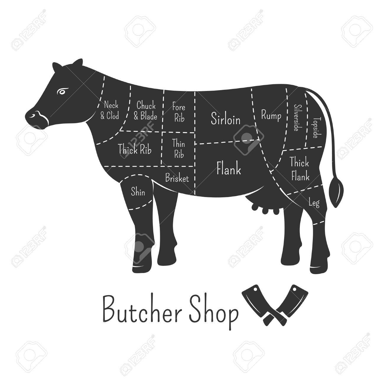 British cuts of beef diagram and butcher shop design royalty free british cuts of beef diagram and butcher shop design stock vector 39793831 pooptronica