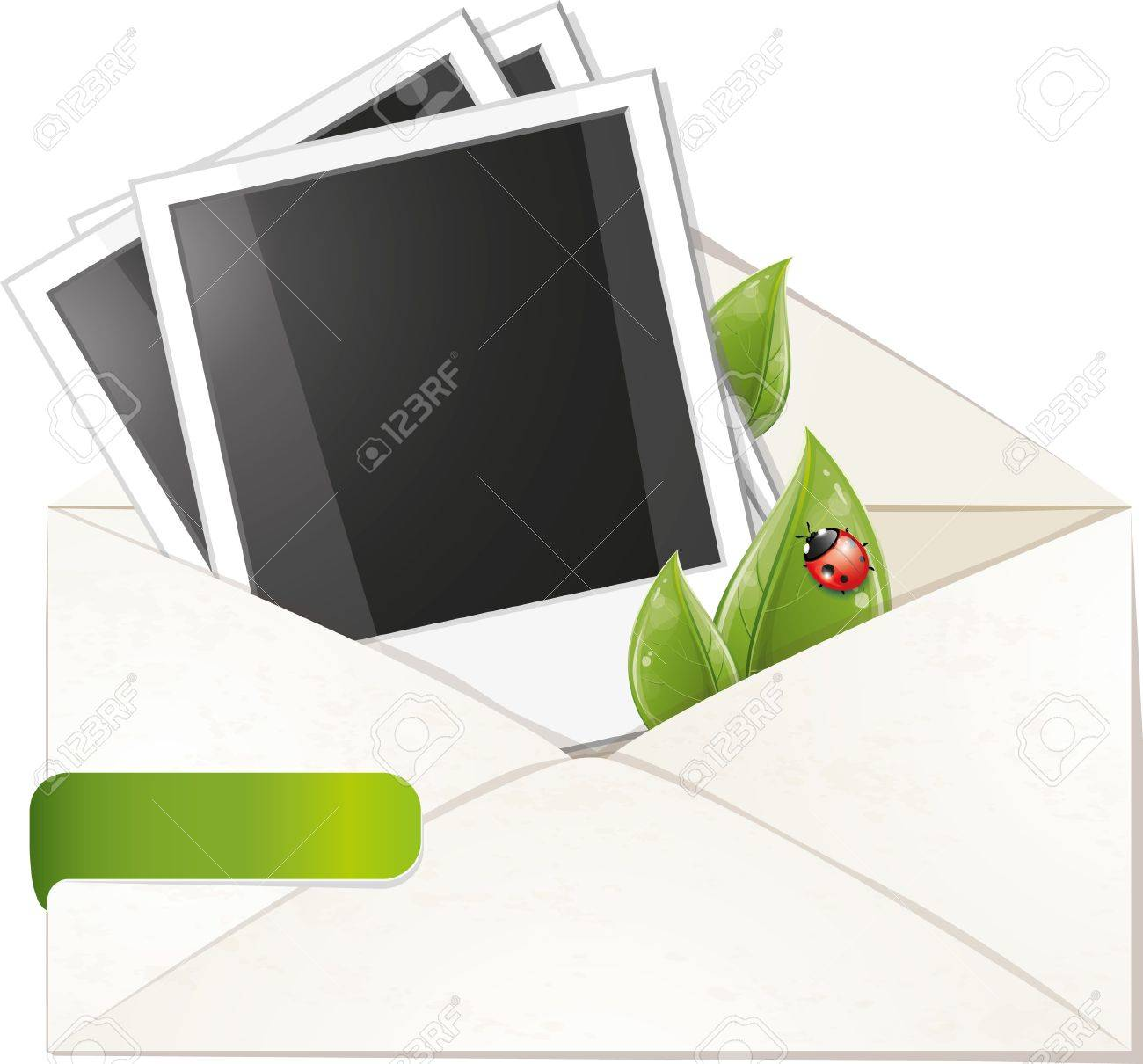 Blank photo frame with green leaves in envelope, vector illustration, eps-10 Stock Vector - 9363829