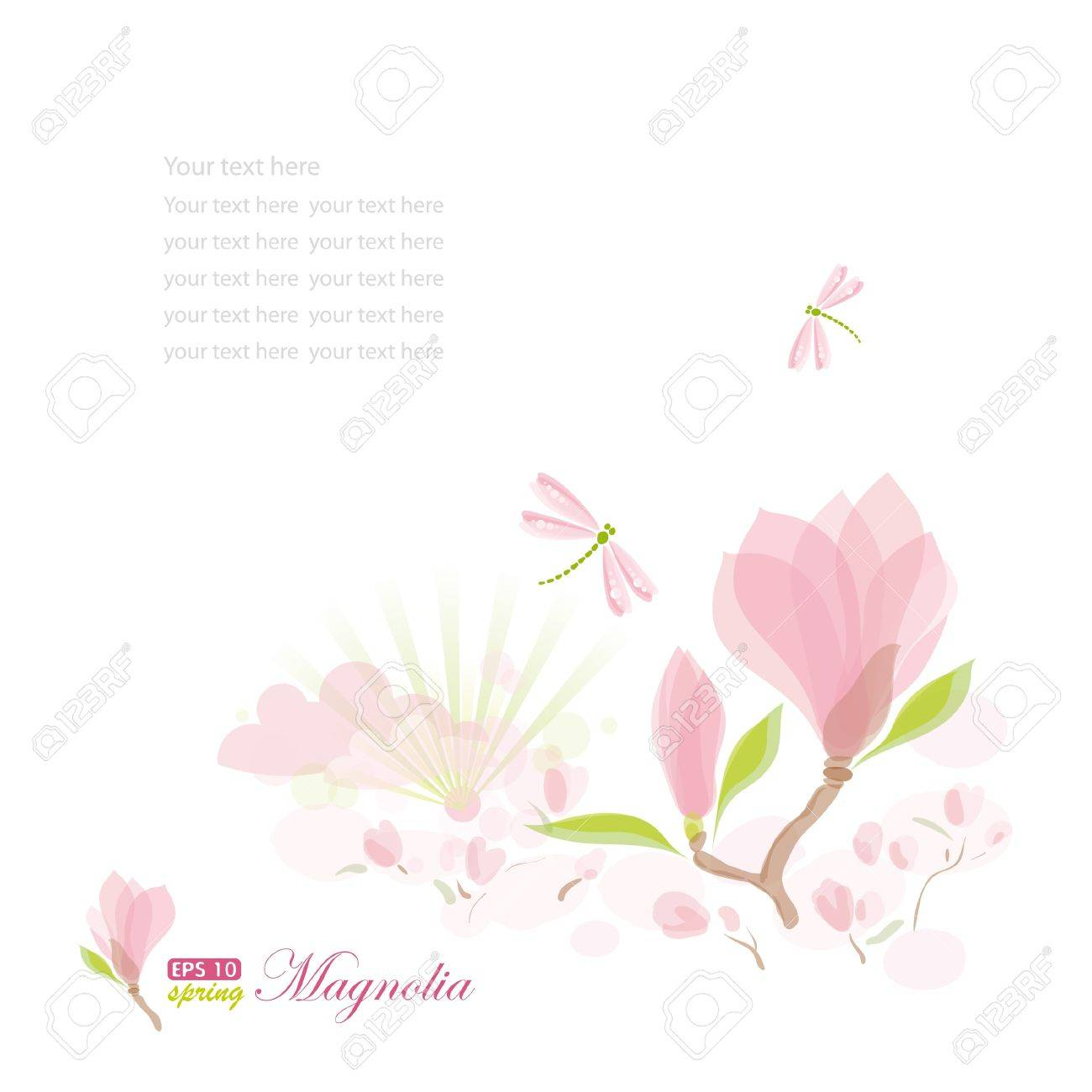 Magnolia branch and dragonfly, nature background, vector illustration, eps-10 Stock Vector - 9722079