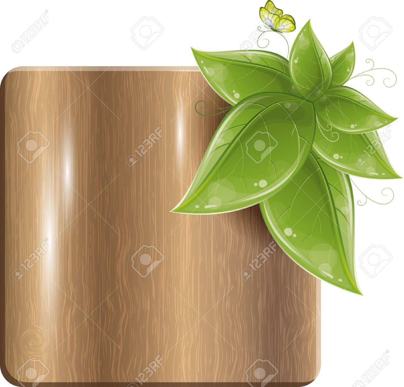 Wood plank with green leaves and butterfly, vector illustration Stock Vector - 9764926