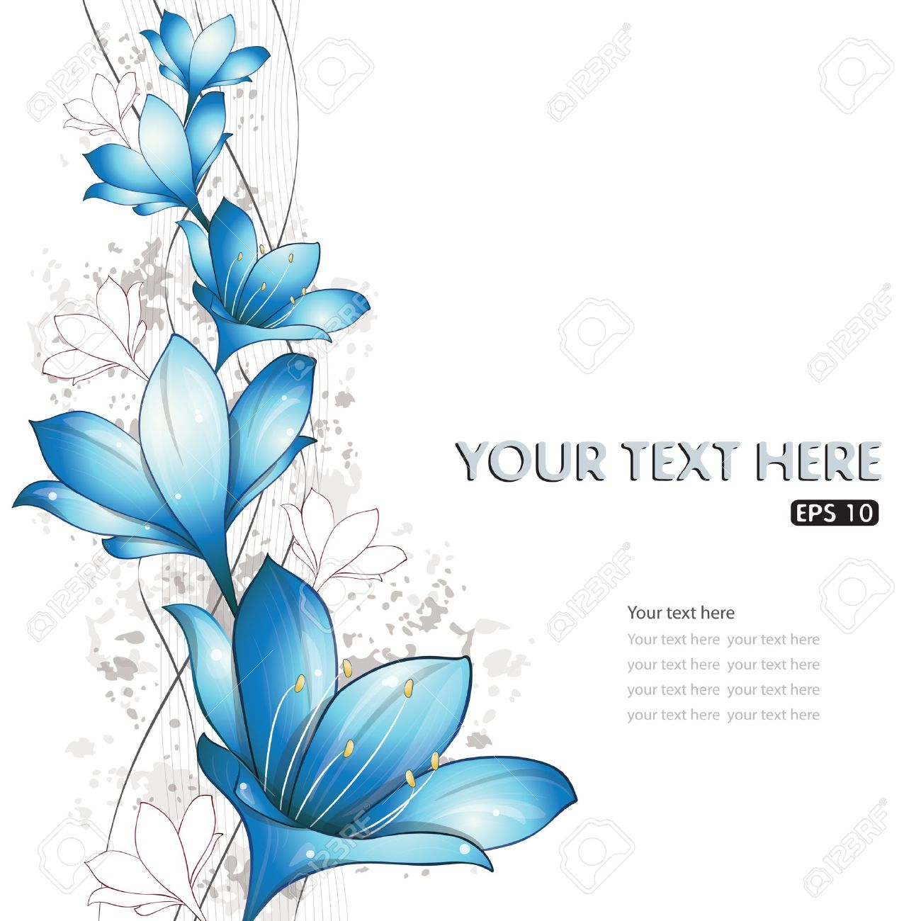 Lily flower stock photos pictures royalty free lily flower lily flower blue lilies design vector illustration eps 10 dhlflorist Images