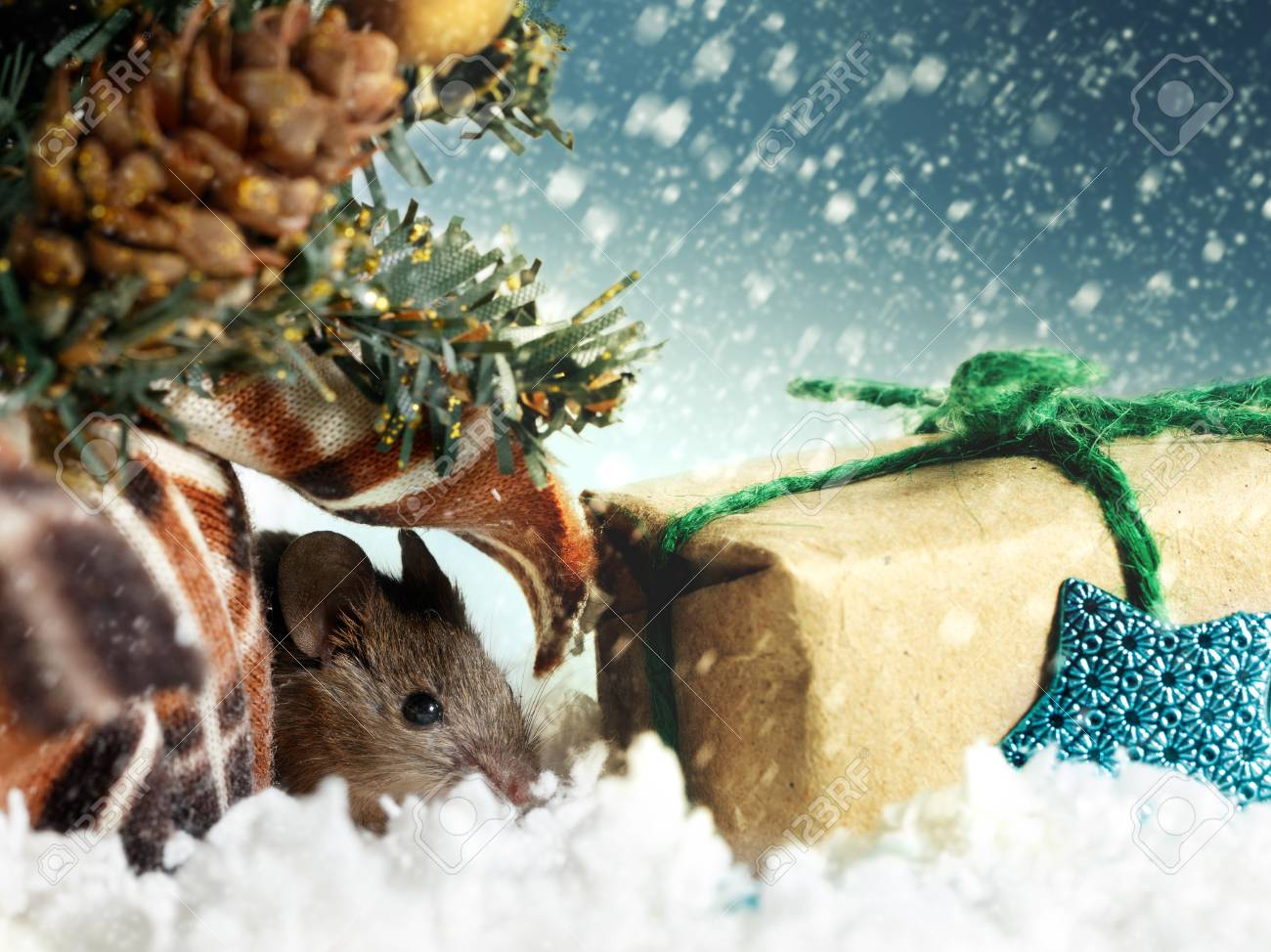 Christmas card: young mouse hides under Christmas tree near gift's box on background of snowing Standard-Bild - 92095658