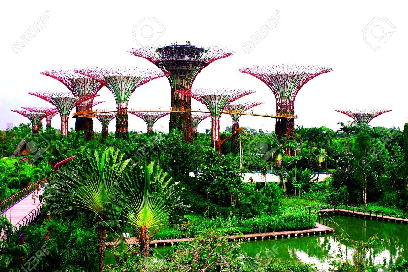Stock Photo   Super Tree, Garden By The Bay Singapore, Day