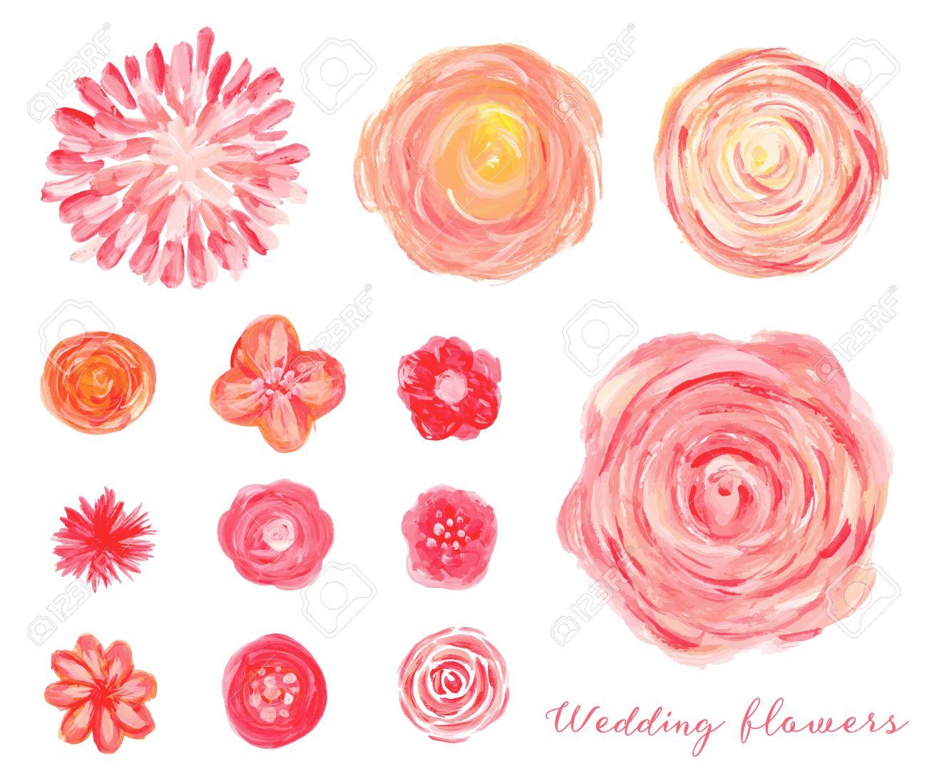 Hand Gezeichnet Hochzeit Blumen Isoliert Rosen Pfingstrosen