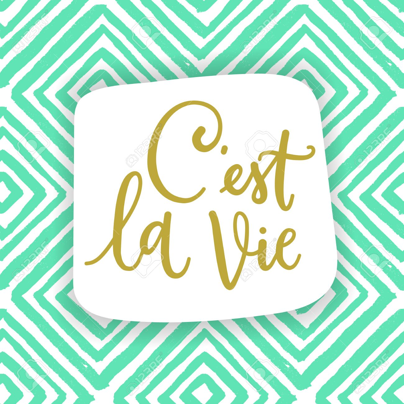 C Stock Quote C'est La Viefrench Phrase Means That's Lifedraw Calligraphic