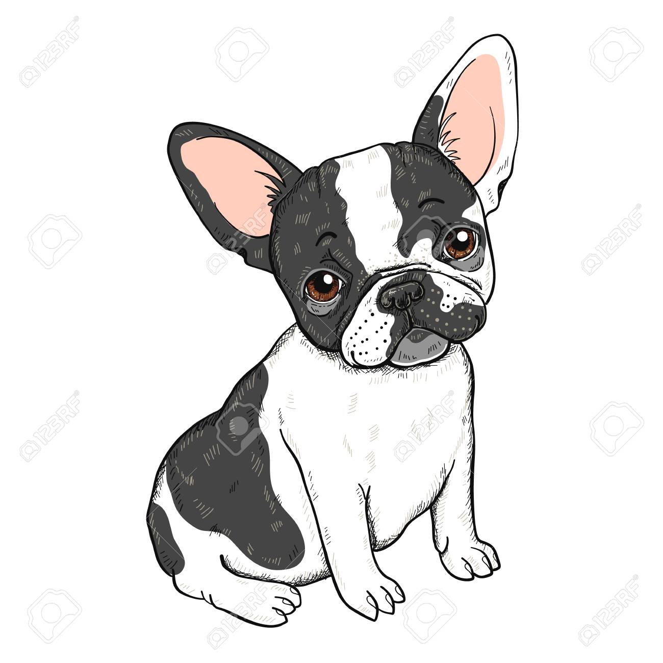 Vector Illustration Of Cute Cartoon French Bulldog Isolated On