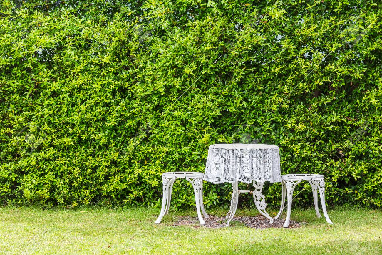 White Garden Table And Chairs On Grass Patio Beside Topiary Stock Photo Picture And Royalty Free Image Image 44758587