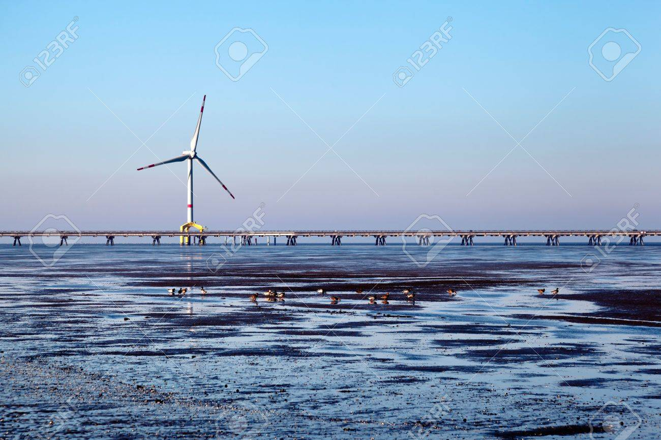 Offshore wind turbine with ducks in the front and copy space. Stock Photo - 11263841