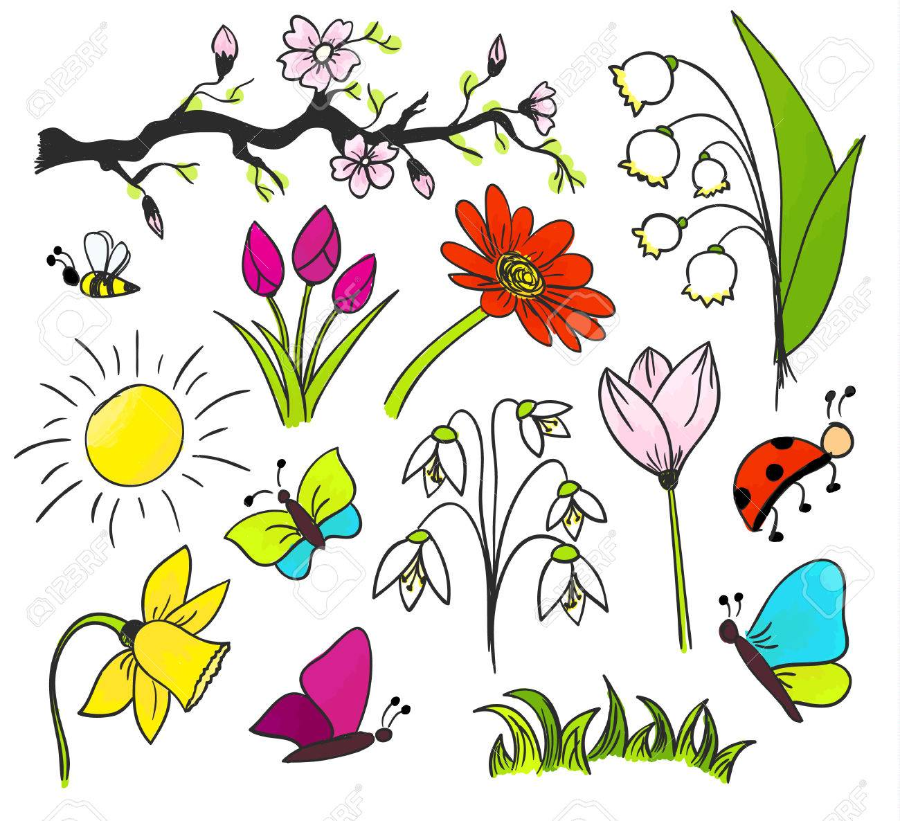 Spring Flowers Vector Drawing Isolated Colorful Royalty Free