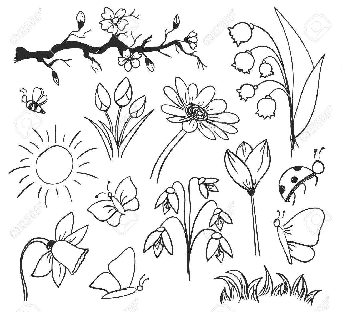 drawing of spring flowers and butterfly royalty free cliparts