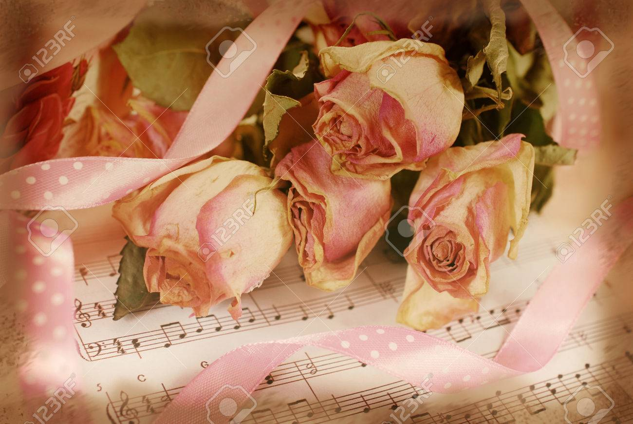 Pink Dried Roses Lying On Old Music Note Paper In Vintage Style