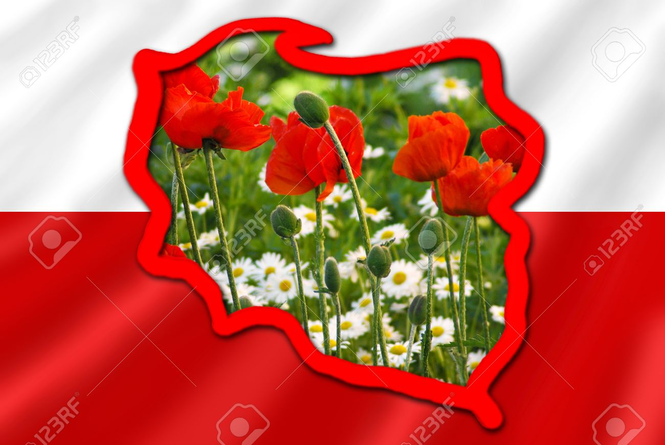 Stylized Map Of Poland On White And Red Flag Filled With Image
