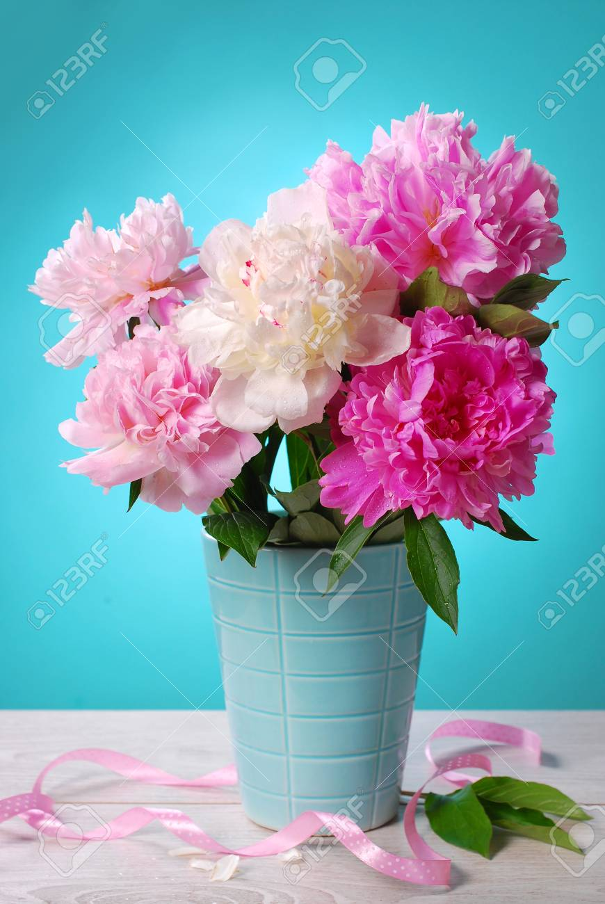Beautiful Pink And White Peony Bouquet In Vase On Blue Background Stock Photo Picture And Royalty Free Image Image 29076022