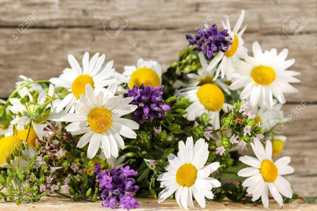 Homeopathy with medicinal herbs - 25979061
