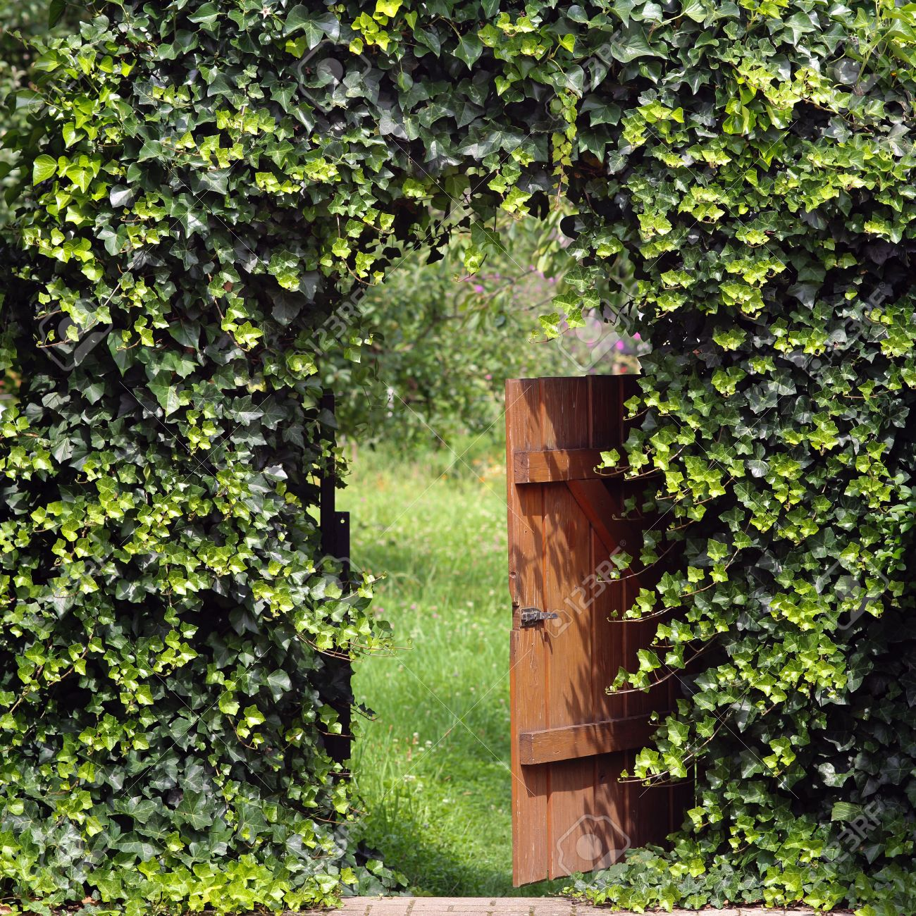 Open garden gate with ivy archway - 32875733