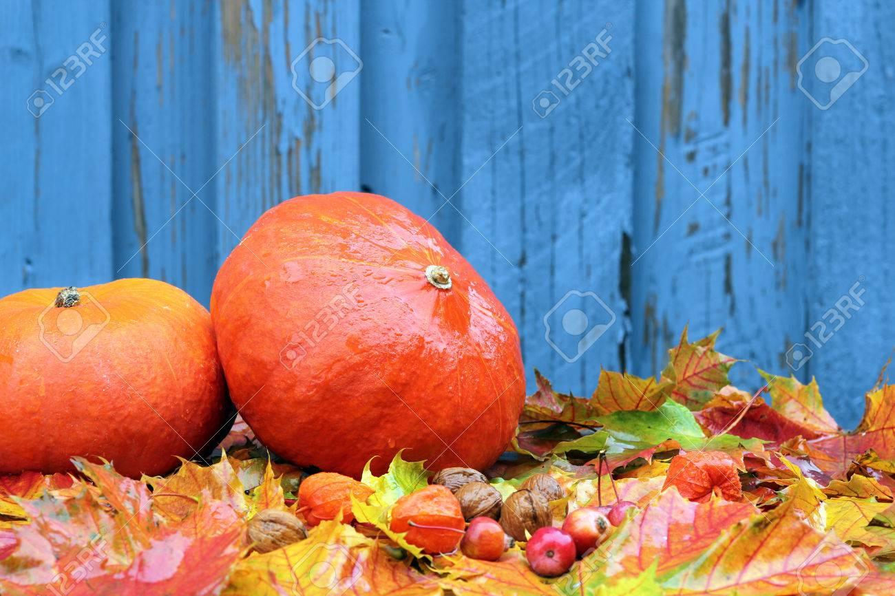 Autumn background with pumpkins, and leavesl - 32926146