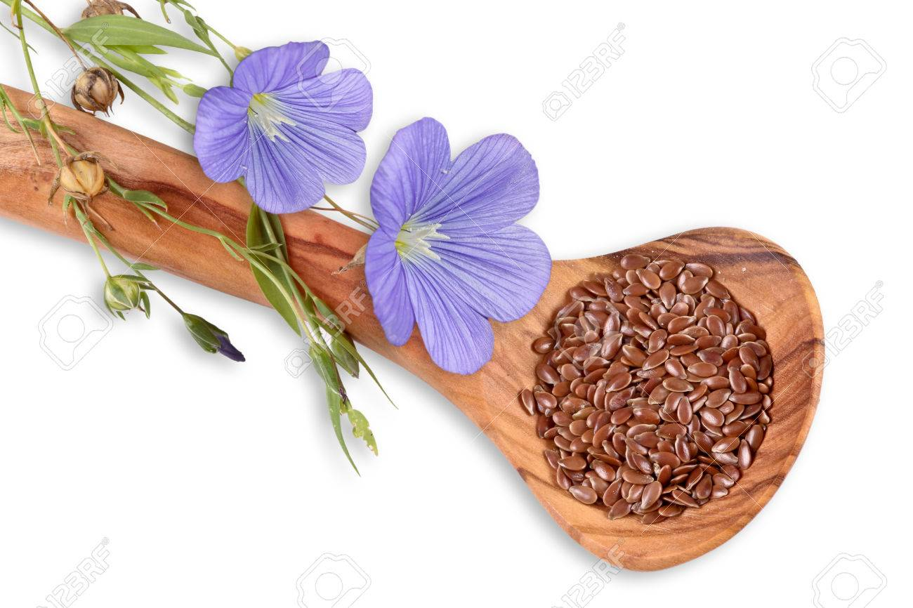 Blue linum blossoms, flax seed - 32926576