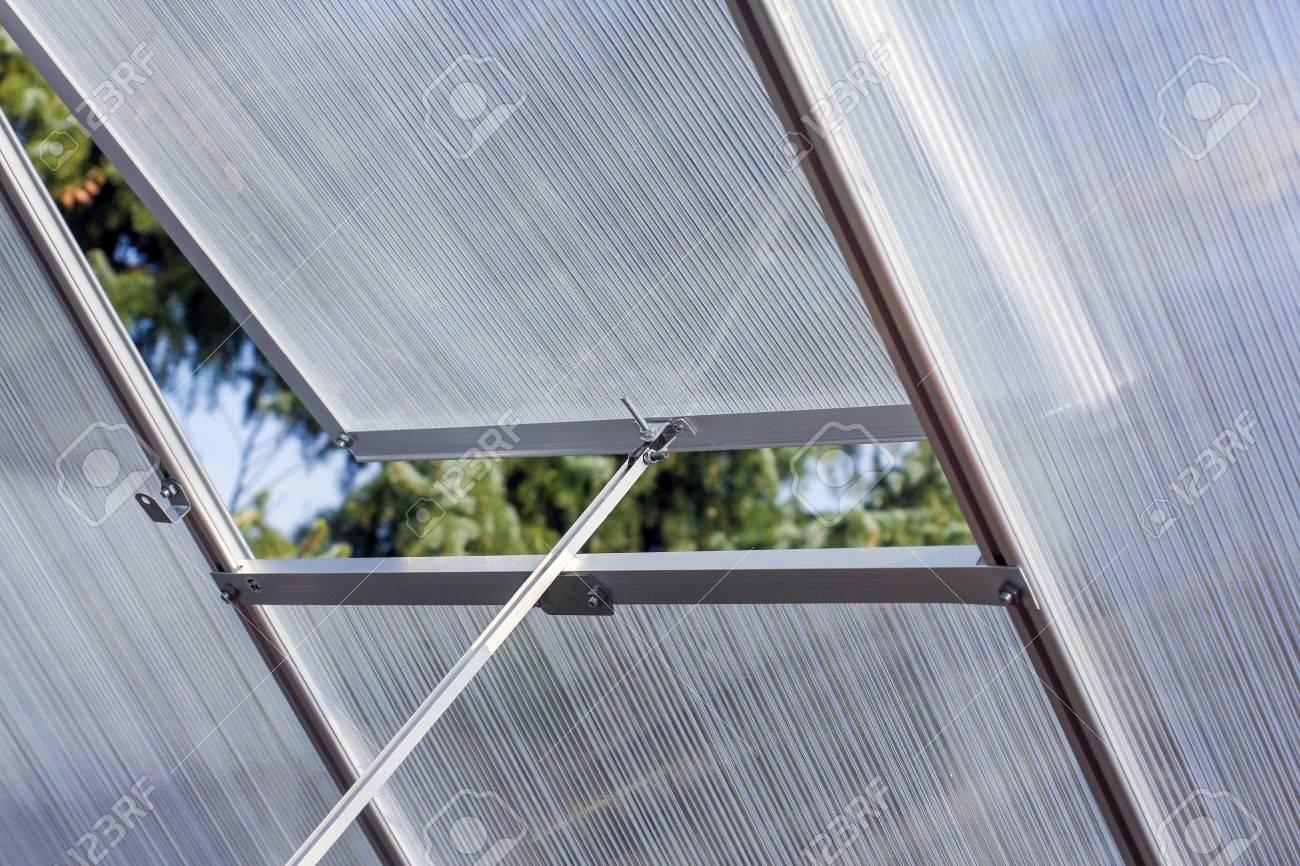 Greenhouse window - 38236795