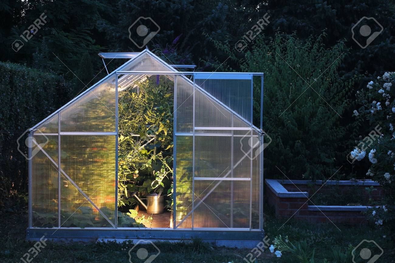 Greenhouse in the evening - 43193840