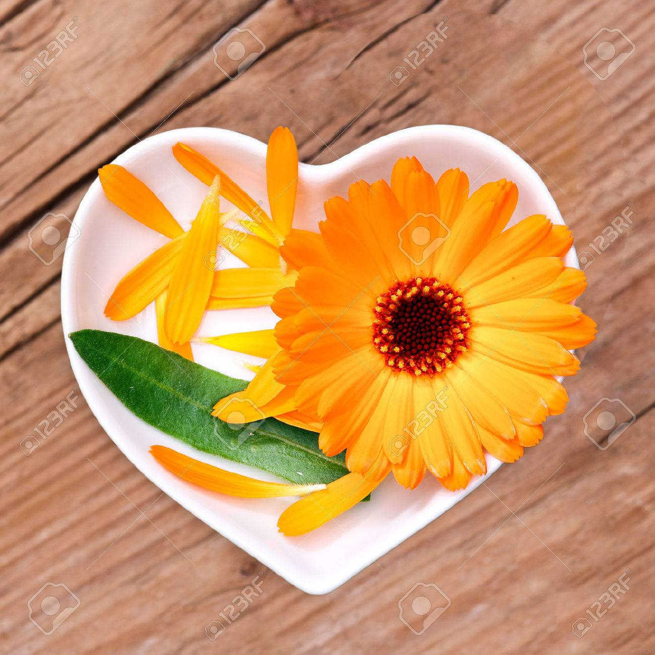 Homeopathy and cooking with calendula - 61826780