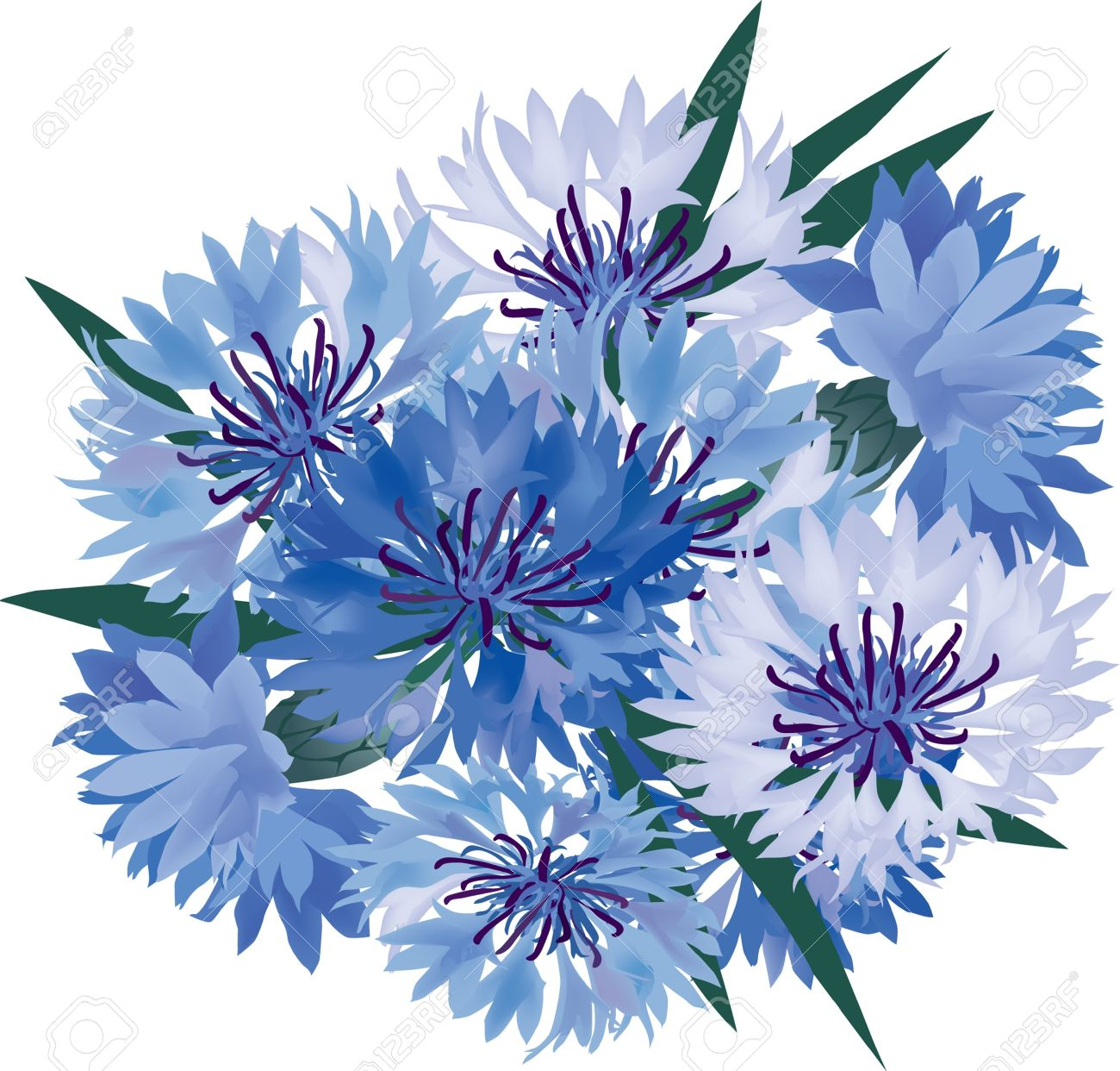 Flower bouquet from blue and lilac cornflower royalty free cliparts flower bouquet from blue and lilac cornflower stock vector 16140293 izmirmasajfo