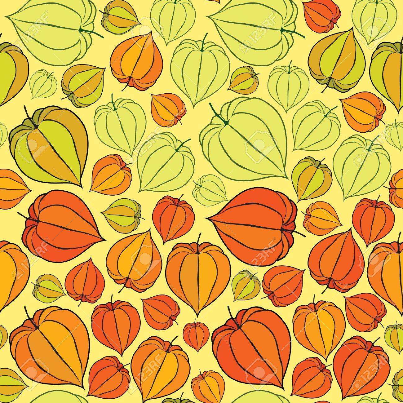 Abstract autumn floral seamless background with winter cherry Stock Vector - 17279985