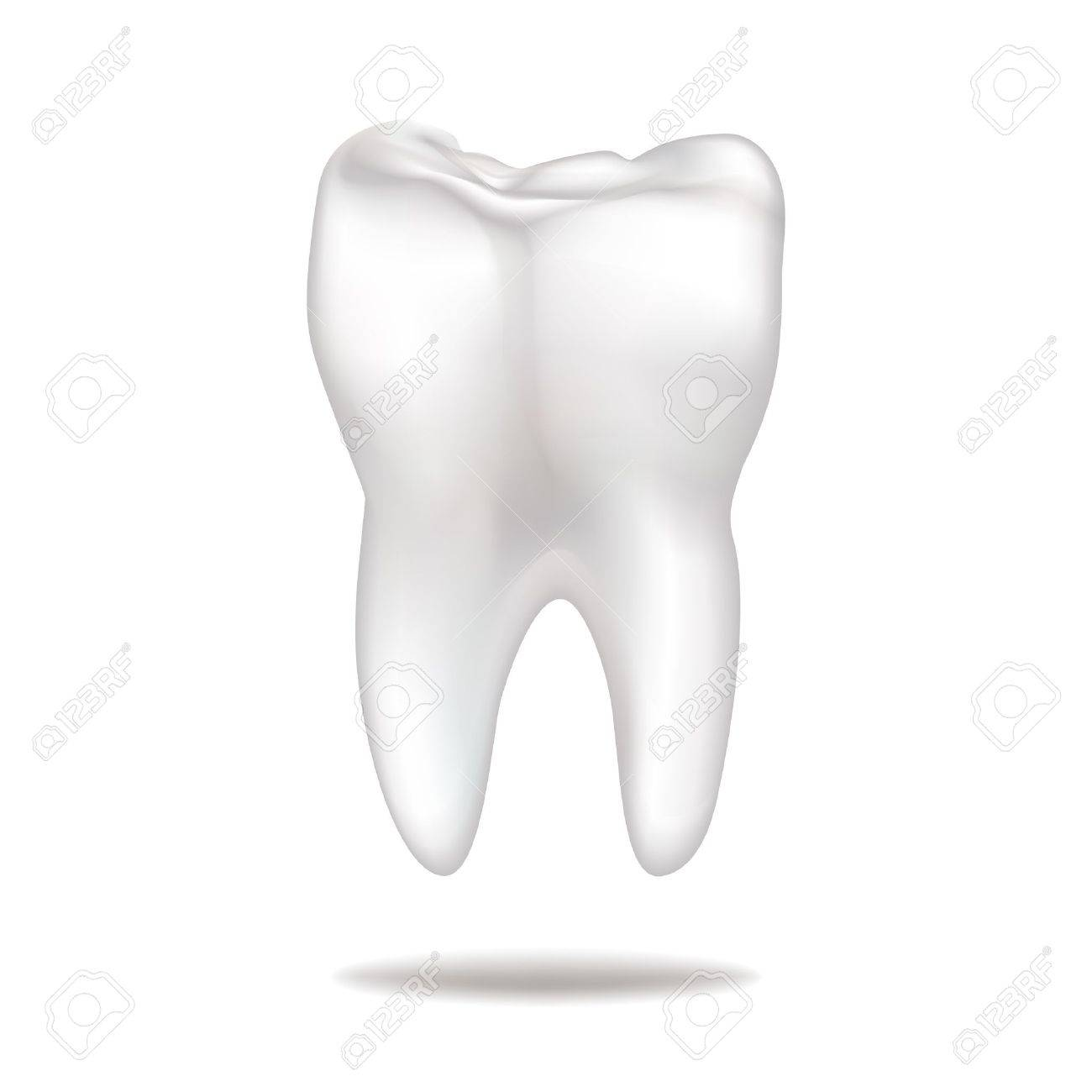 Tooth Stock Vector - 17280111