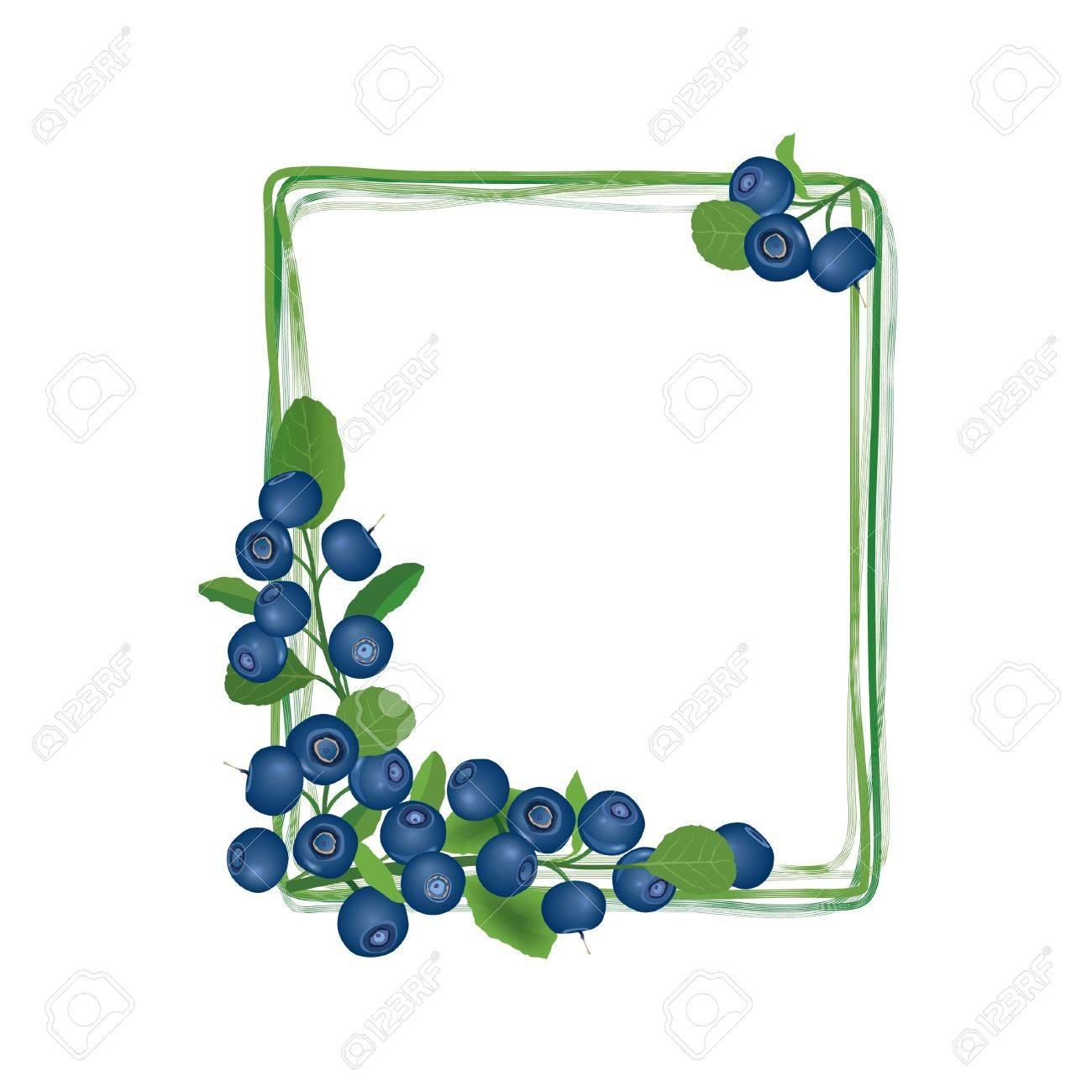 Blueberry frame  Billberry bush border  Summer greeting card Stock Vector - 18320728