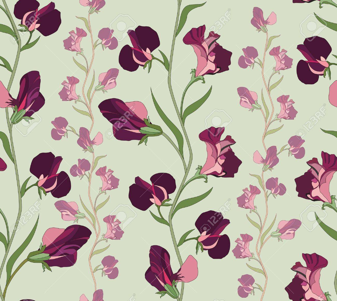 flower seamless background  floral seamless pattern with lilac and pink sweet pea Stock Vector - 19335173
