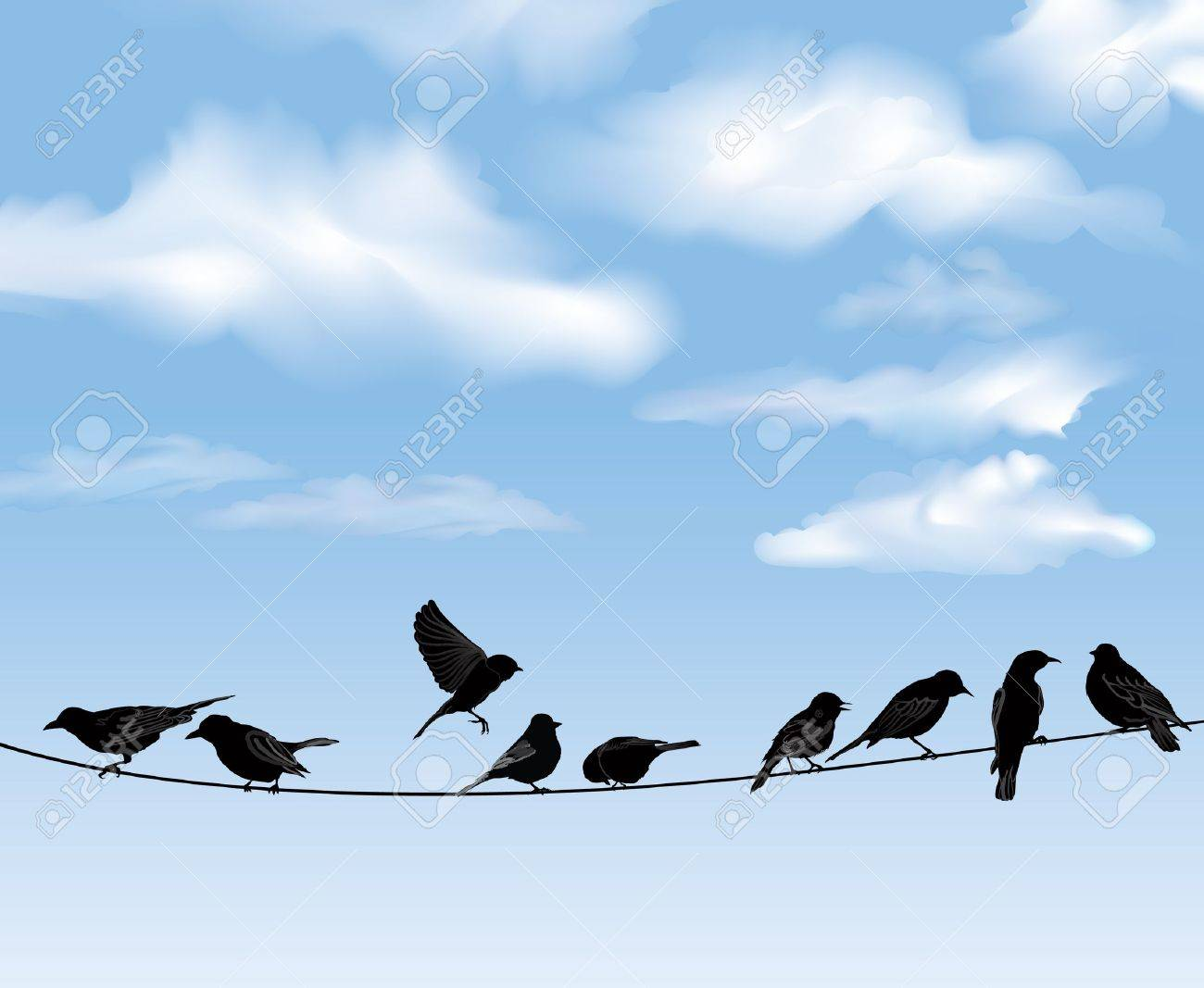 Set of birds on wires over blue sky background  A vector illustration Stock Vector - 20912612