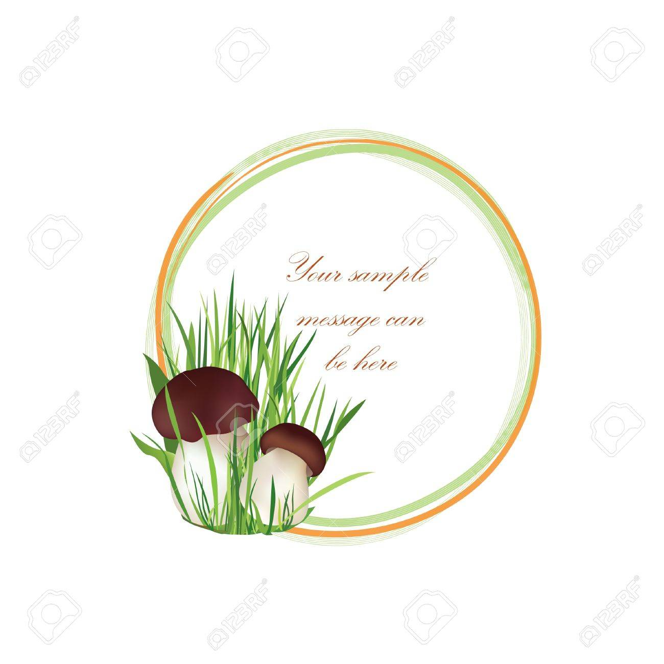 Mushrooms vector frame  Boletus background with copy space  Floral decor isolated on white background Food illustration Stock Vector - 21604214