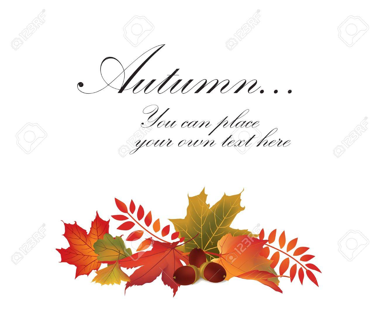 Autumn maple leaf vector frame with copy space on white background  Fall set Stock Vector - 22204545