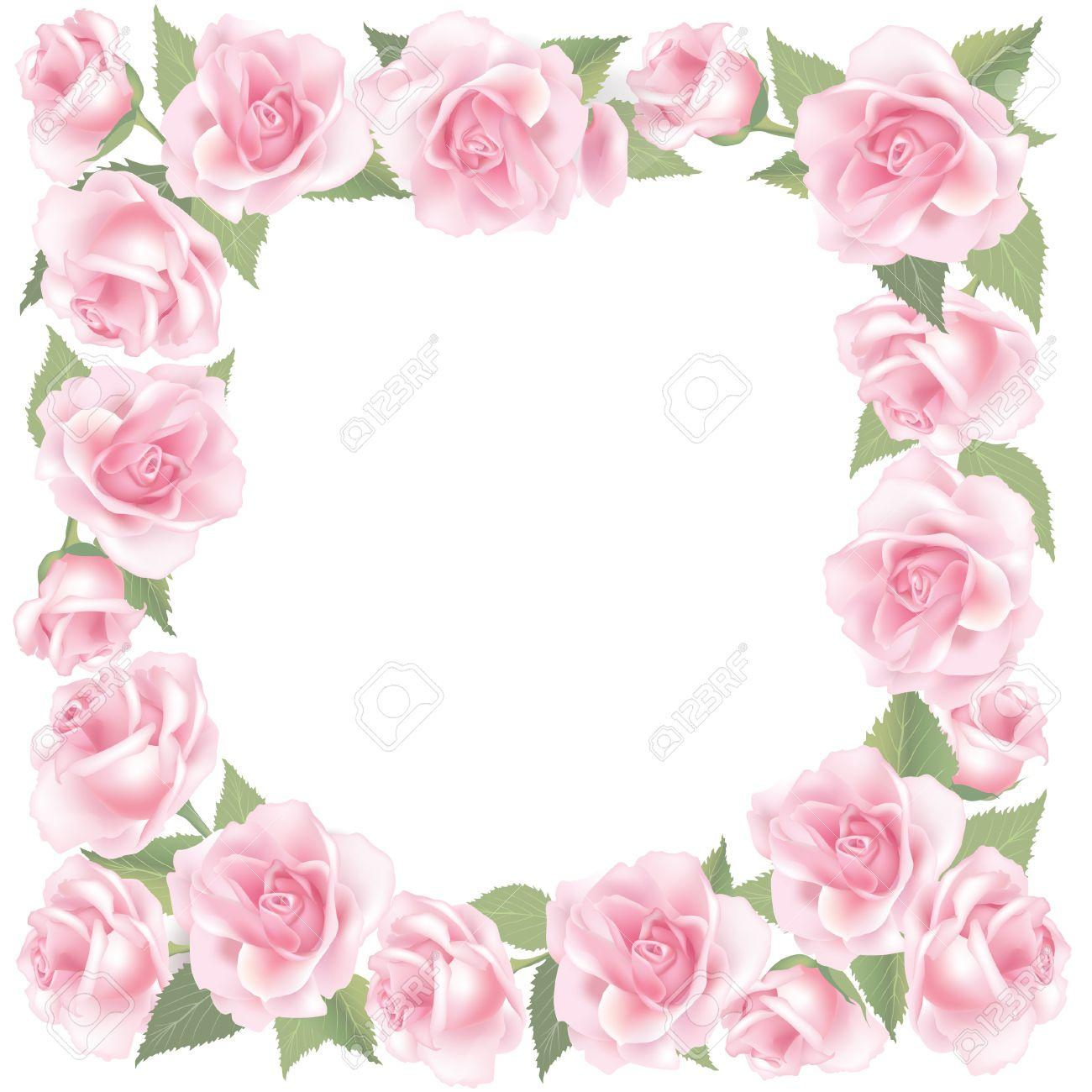 Flower Rose Background Floral Frame With Pink Roses Royalty Free ...