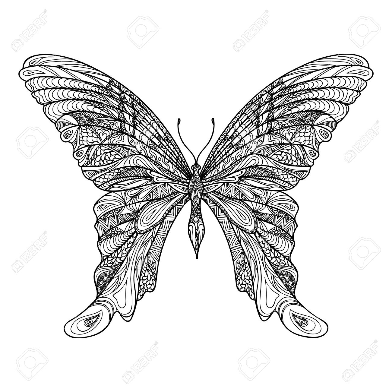 Butterfly isolated. Zentangle butterfly hand drawn sketch vector illustration. Decorative abstract doodle design element with pattern, suitable for a tattoo. Stock Vector - 48447958
