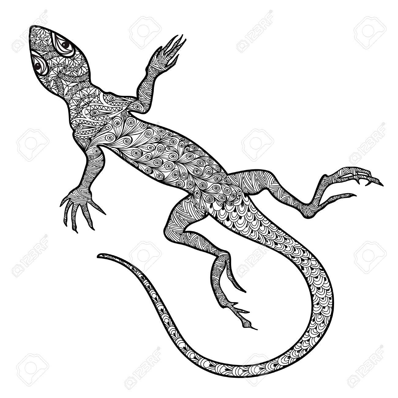 Lizard Isolated. Hand Drawn Vector Salamander With Ethnic Tribal ... for House Lizard Drawing  131fsj