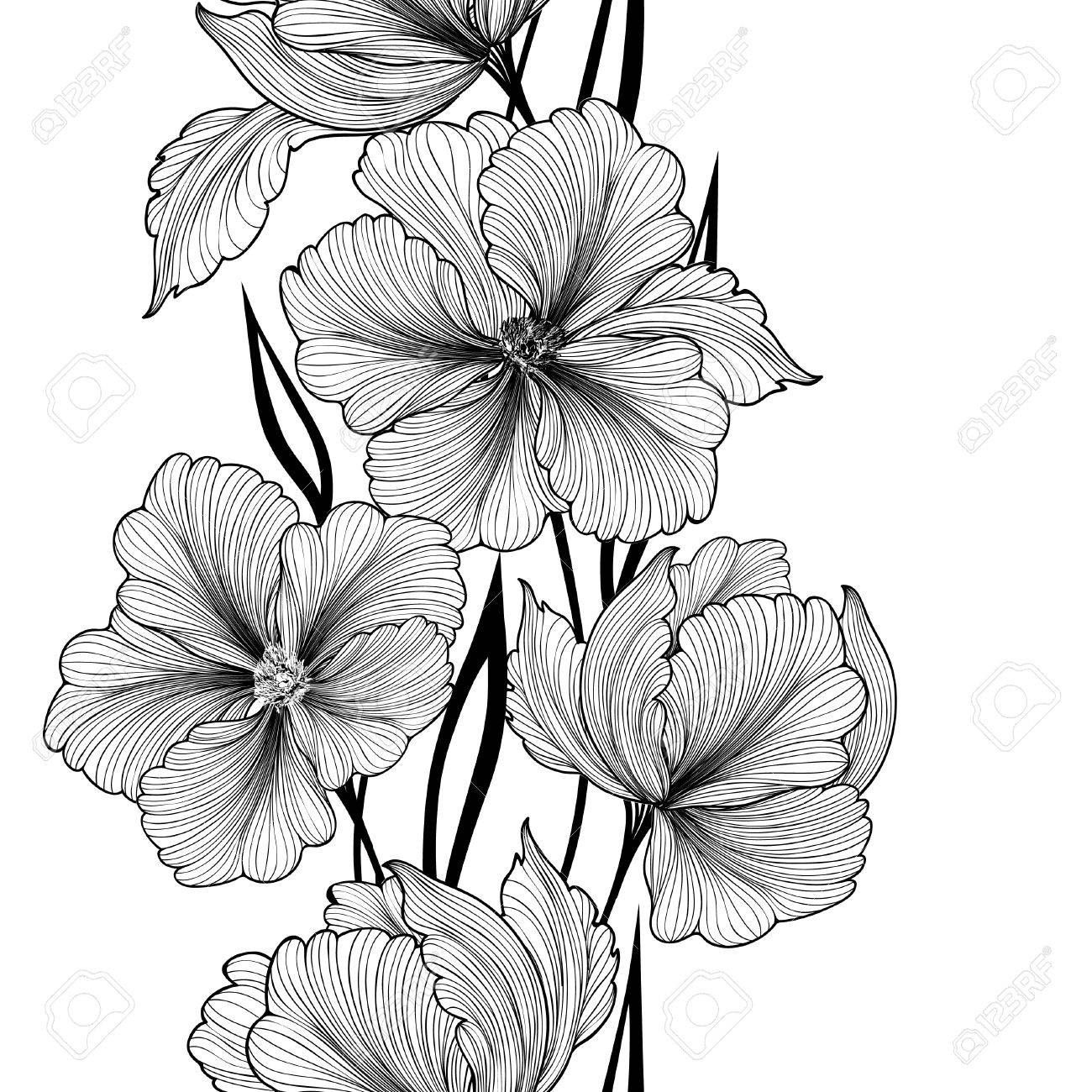 Beautiful Monochrome Black And White Dahlia Flower Isolated On.. Royalty  Free Cliparts, Vectors, And Stock Illustration. Image 64736730.