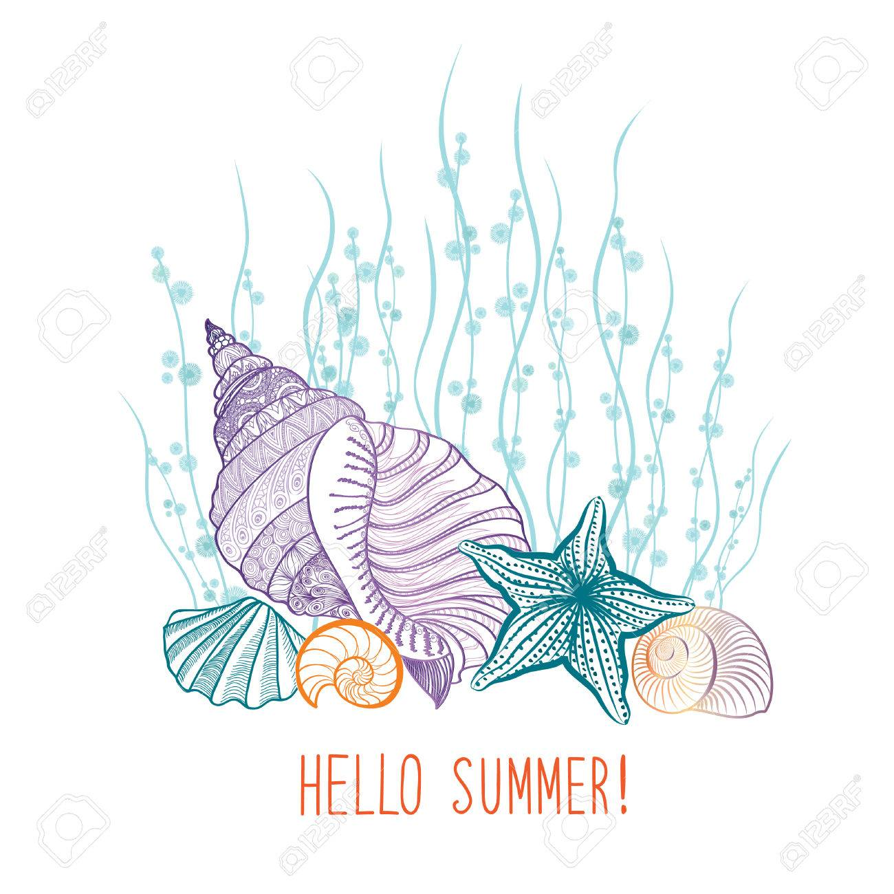 Summer Background. Summer Holidays Cover With Seashell Sea Star. Hello  Summer Greeting Card.