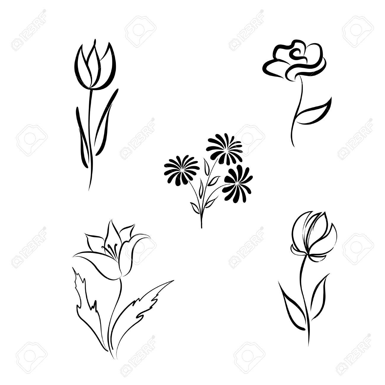 Ensemble De Fleurs Dessin A La Main Grave Elements De Conception