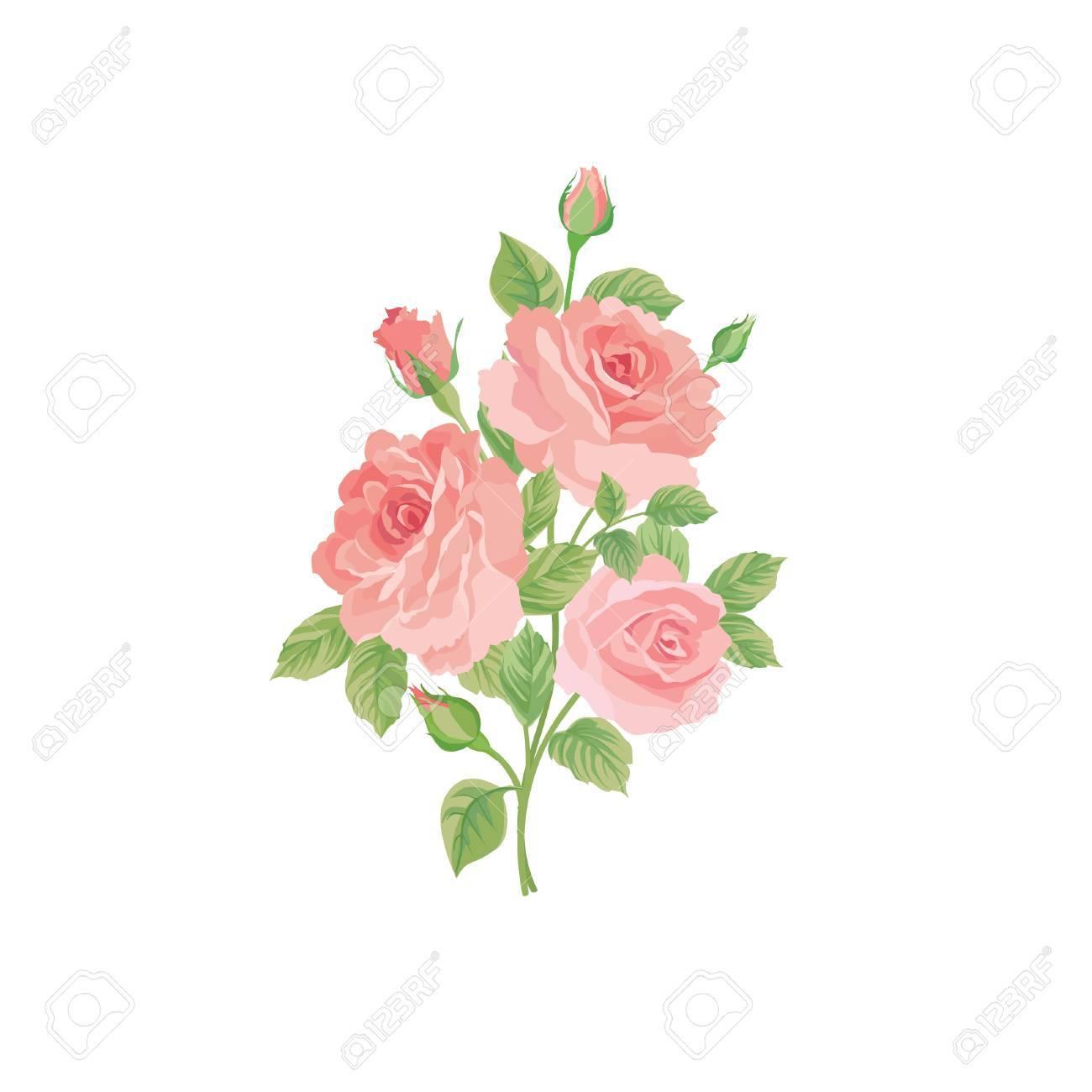 Bouquet Floral Isole Sur Fond Blanc Fleur Rose Posy Carte De Voeux
