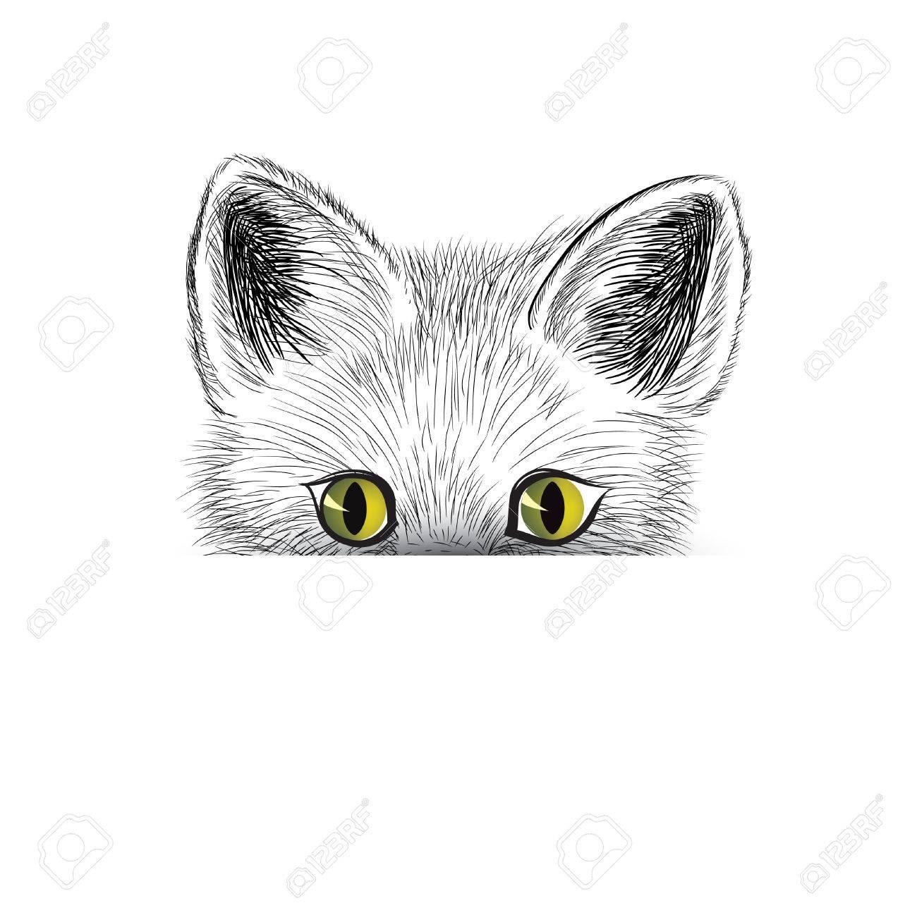 猫子猫の顔のスケッチ分離された猫猫頭のアイコンのカメラ目線し
