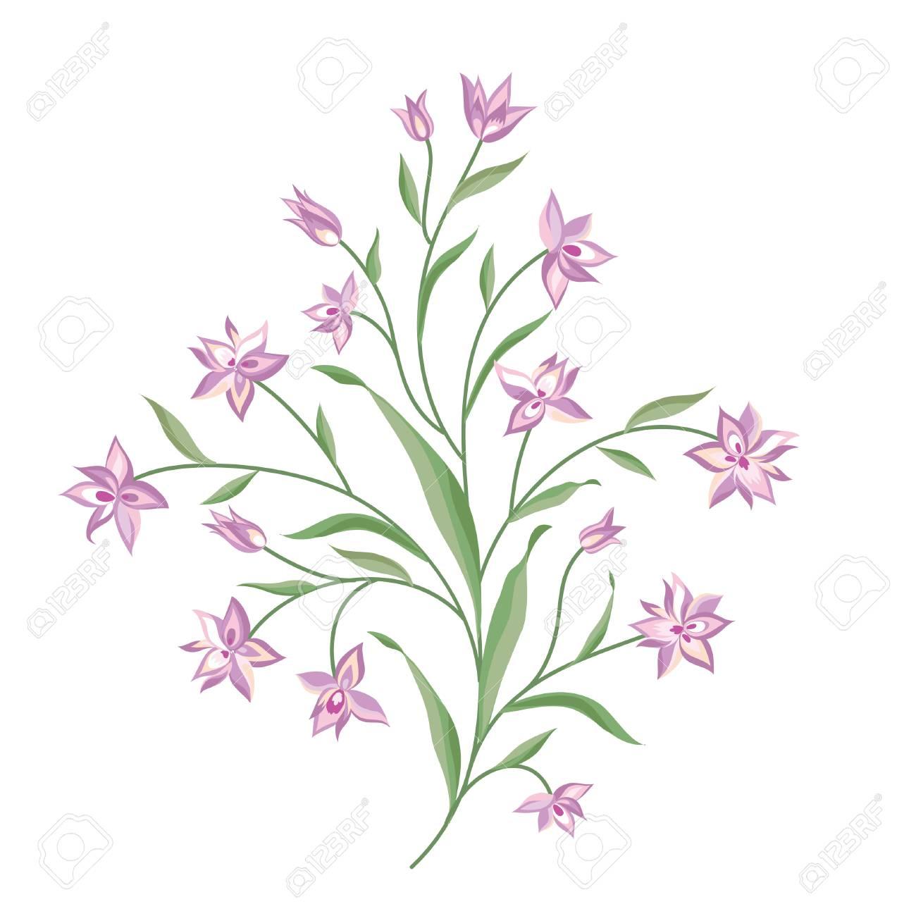 Floral Bouquet Set Wilder Blume Botanischer Hintergrund Vegetation