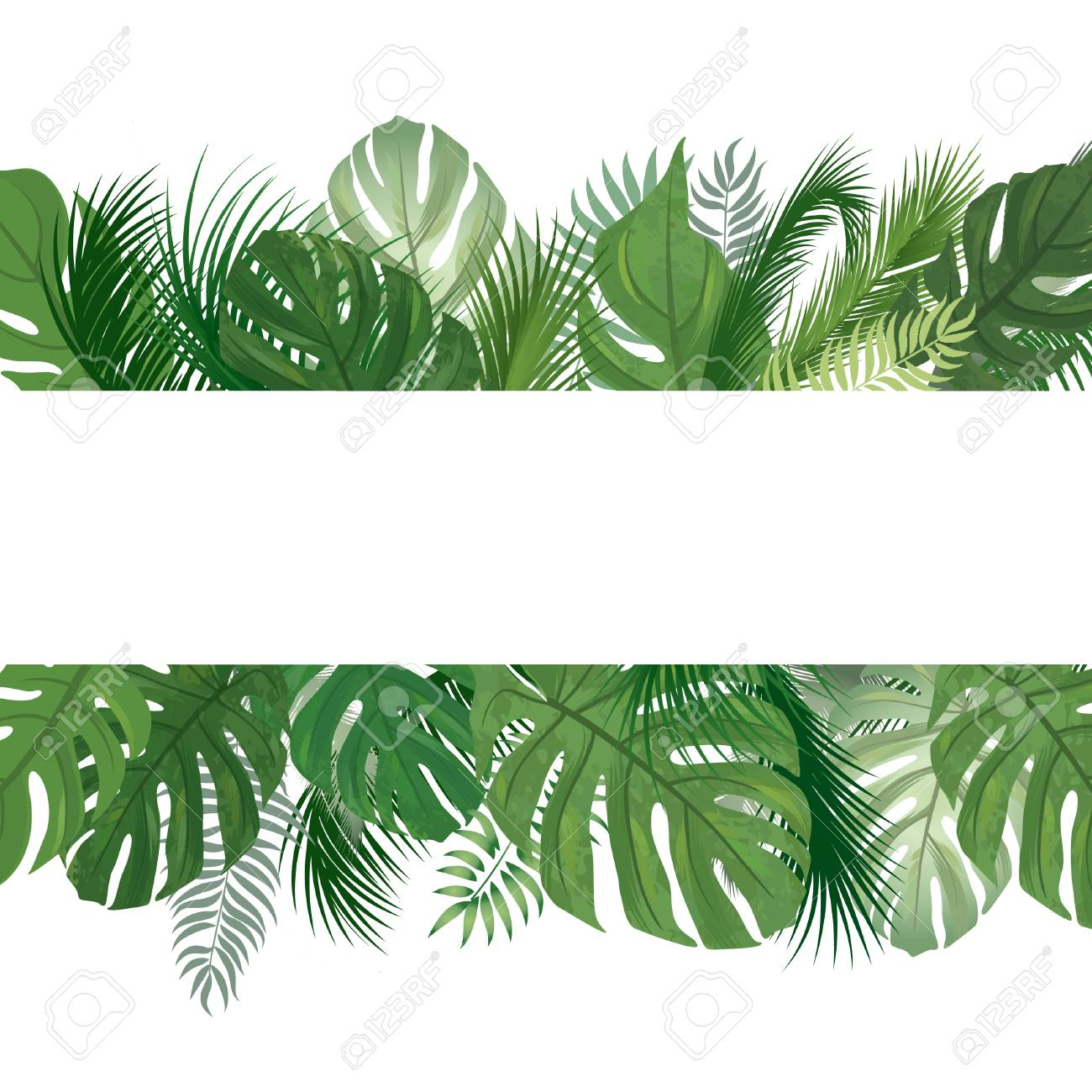 Floral Seamless Pattern Tropical Leaves Background Palm Tree Royalty Free Cliparts Vectors And Stock Illustration Image 82926332 Leaves of palm tree on white background. floral seamless pattern tropical leaves background palm tree royalty free cliparts vectors and stock illustration image 82926332