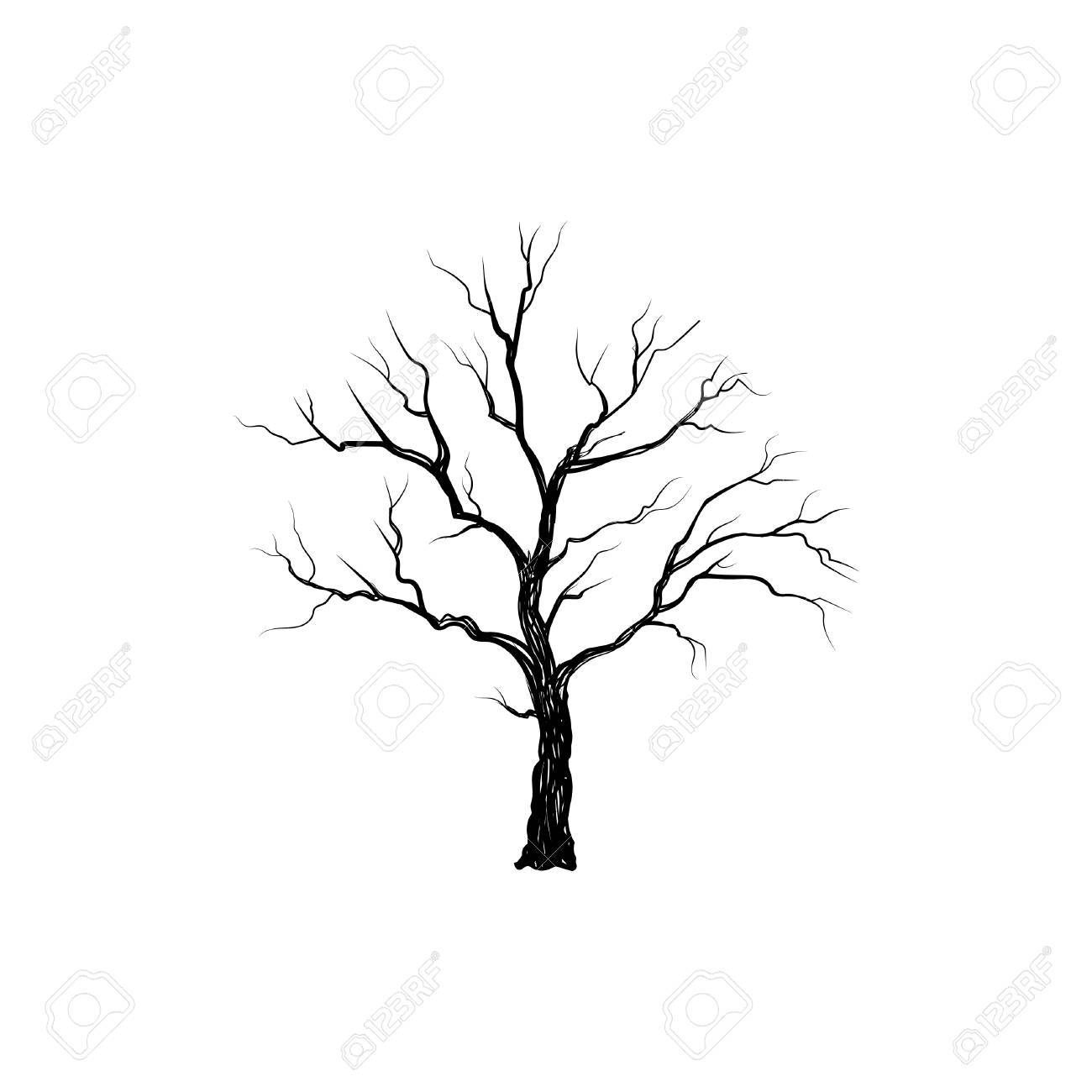Tree without leaves isolated. Nature sign Vector illustration - 85319421