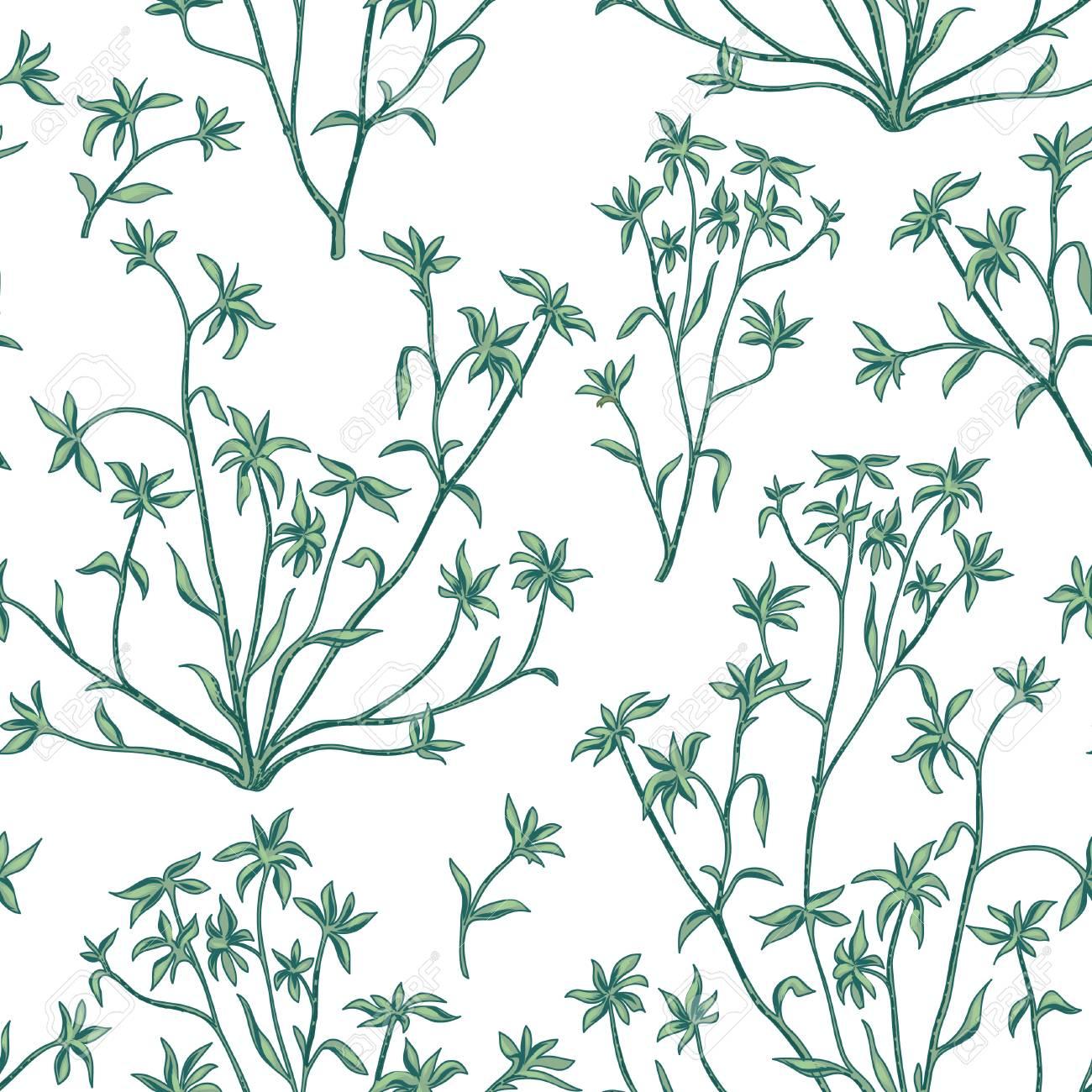 Hojas Florales Patron Transparente Naturaleza Muerta Fondo Plano Fondo De Pantalla Con Flores