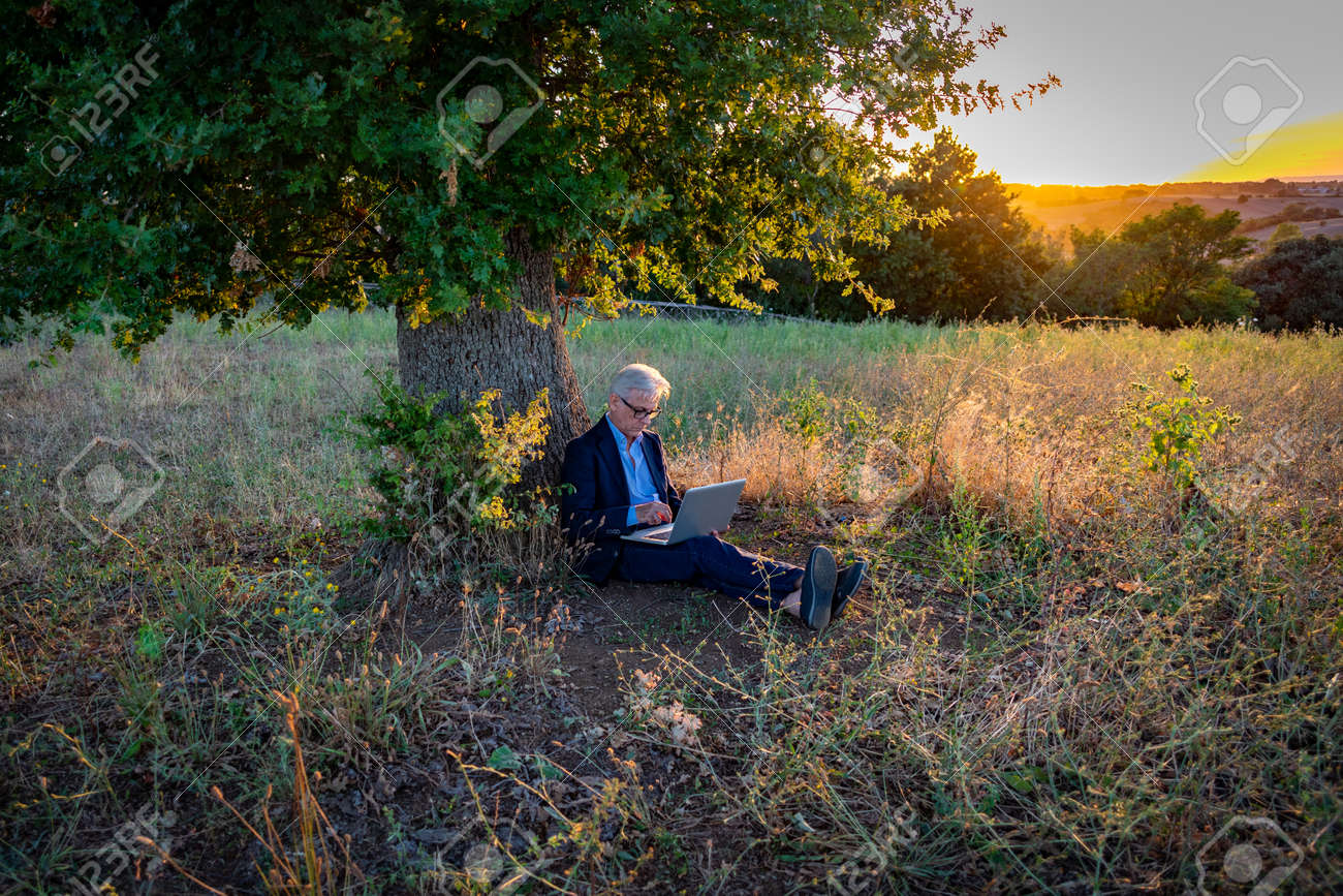 Senior businessman with laptop working under the magic tree at sunset - 163713638