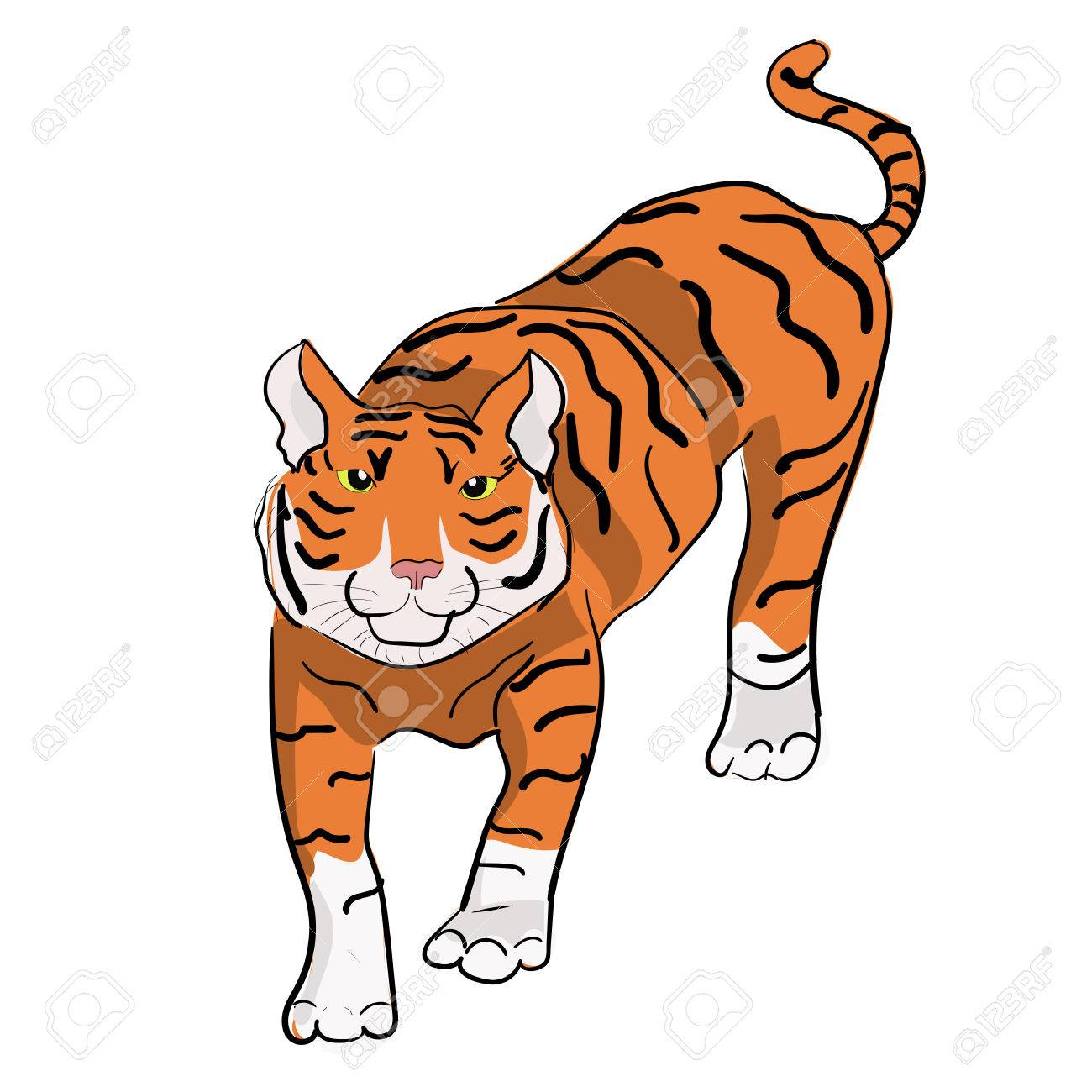 Vector hand drawn tiger chinese new year symbol can be used chinese new year symbol can be used for baby t buycottarizona