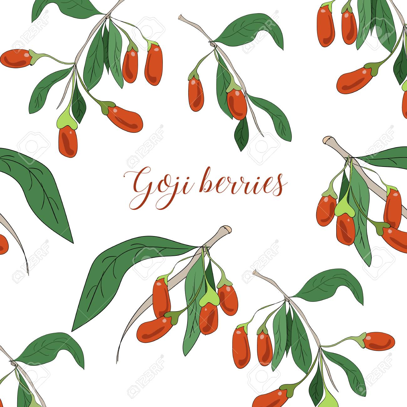 Vector Goji Berries Banner With Branches On White Backgroud