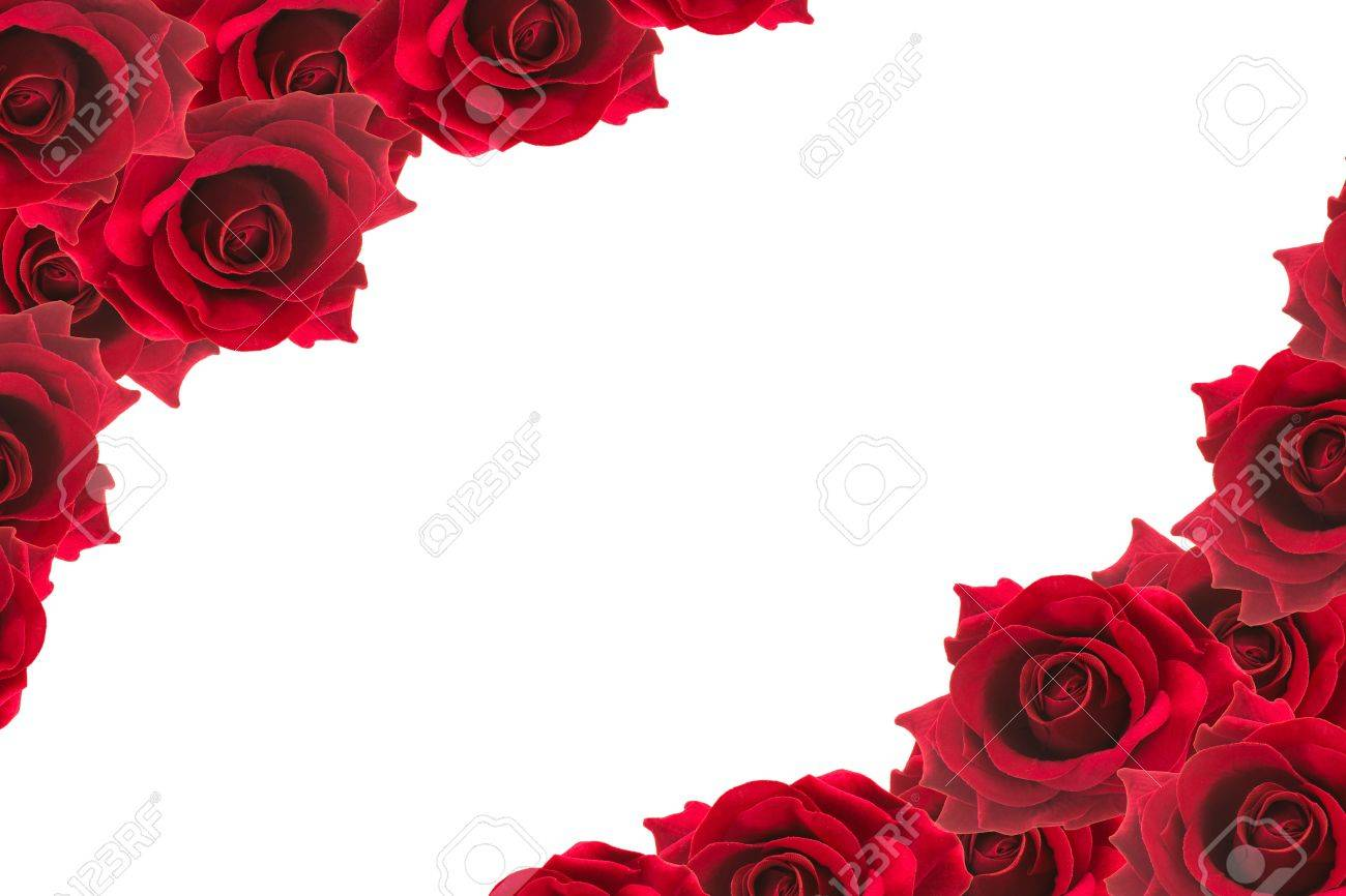 Red Roses Frame Background Stock Photo, Picture And Royalty Free ...